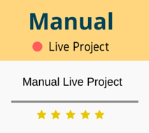 manual testing live projects videos