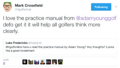 the practice manual adam young